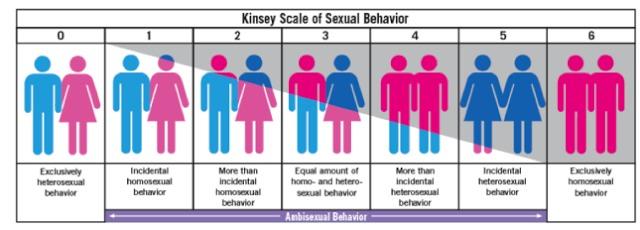 Skala Perilaku Seksual Menurut Kinsley
