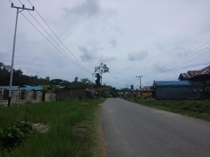 Satu Jalan Raya Lurus di Bintuni